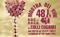 Mostra dei vini DOC e DOCG dei colli Euganei e sagra di San Martino a Luvigliano
